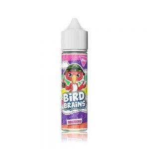Bird Brains Rainbow